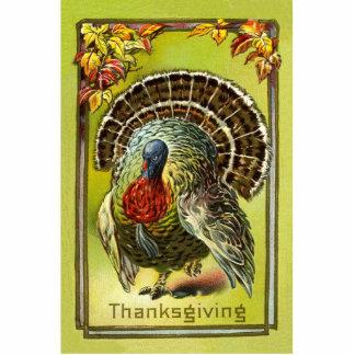 Thanksgiving Turkey Pin Photo Sculpture Button
