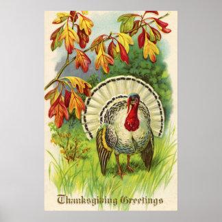 Thanksgiving vintage Turquie