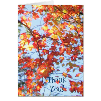 ThankYou! Fall in Maine Card