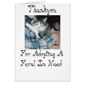 Thankyou-Feral Cat Card