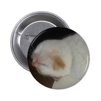 That Stupid American's Cat Hector 2 Inch Round Button