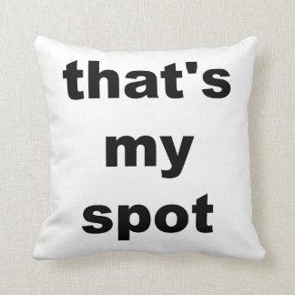 That's my spot. Pillow