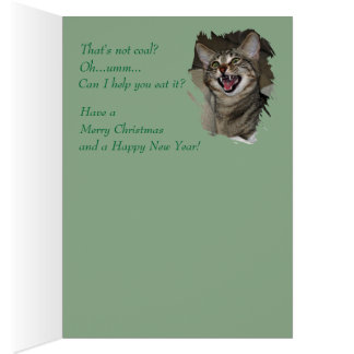 Thats Not Coal Laughing Cat holiday card