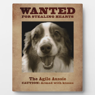 The Agile Aussie Plaque