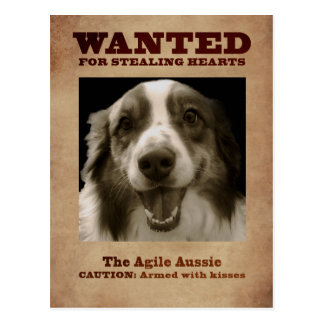The Agile Aussie Postcard