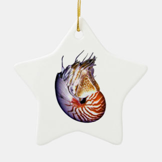 THE AMAZING NAUTILUS CERAMIC ORNAMENT