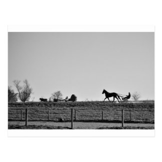 The Amish Country Postcard
