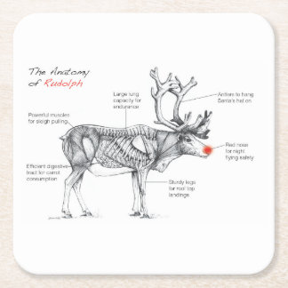 The Anatomy of Rudolph Square Paper Coaster