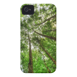 The Ancient Tree Canopy iPhone 4 Case-Mate Case