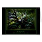 The Angel Oak Card