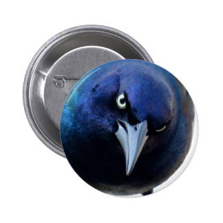 The Angry Grackle 2 Inch Round Button