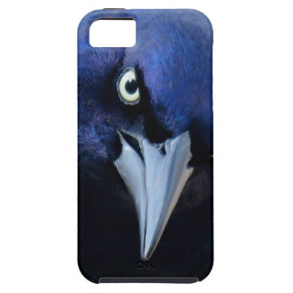 The Angry Grackle Case For The iPhone 5