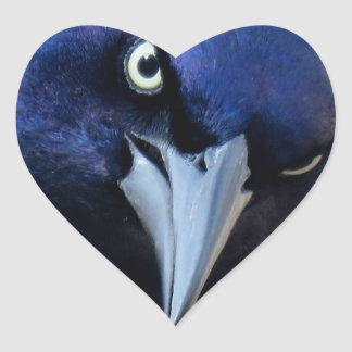 The Angry Grackle Heart Sticker