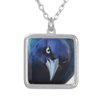 The Angry Grackle Silver Plated Necklace