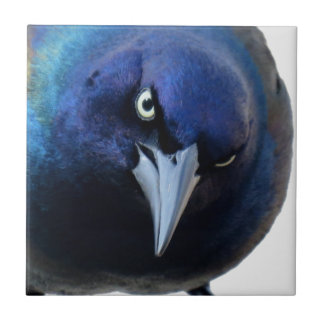 The Angry Grackle Tile