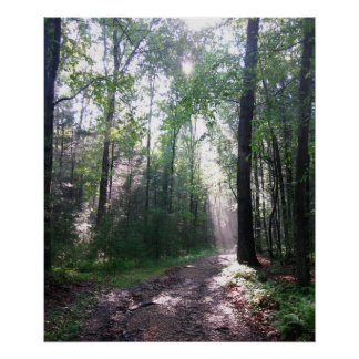 The Appalachian Trail, PA Poster