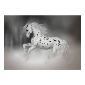 The Appaloosa Poster
