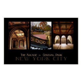 The Arcade /Central Park 24x15 Poster