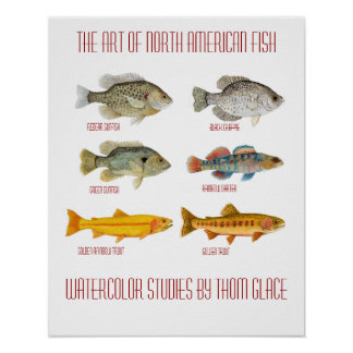 The Art of North American Fish Poster