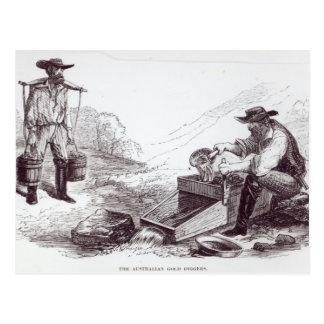 The Australian Gold Diggers Postcard