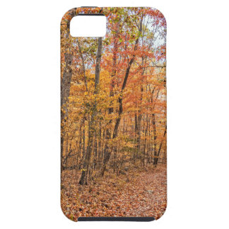 The Autumn Trail Case For The iPhone 5