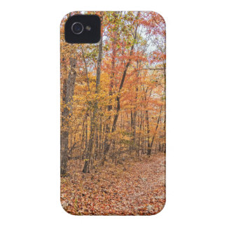 The Autumn Trail iPhone 4 Case-Mate Cases