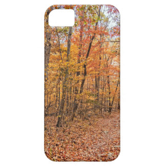 The Autumn Trail iPhone 5 Cover