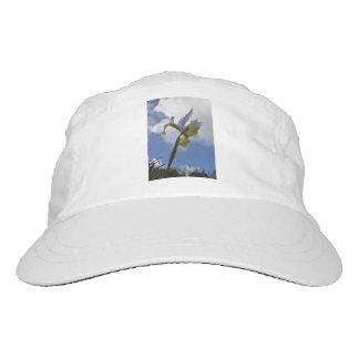 The Azores iris Hat