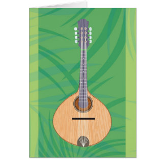The Bahia Card