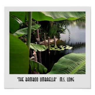 The Bamboo Umbrella Poster