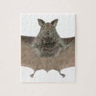 the bat jigsaw puzzle