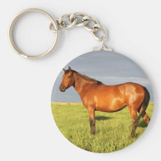 The Bay Mare Keychain