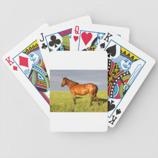 The Bay Mare Poker Deck