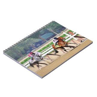 The Bay Shore Notebook