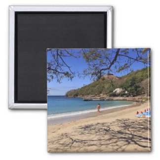 The beach at Pigeon Island National Park Magnet