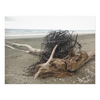 the beach photo print