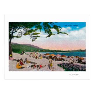 The Beach Scene at Carmel, California Postcard
