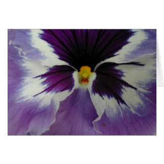 the beak of a pansy? card