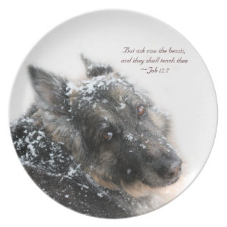 The Beasts Shall Teach Thee - Job 12:7 Party Plates