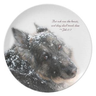 The Beasts Shall Teach Thee - Job 12:7 Plate
