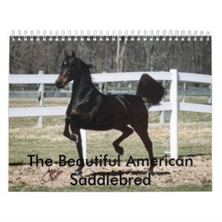 The Beautiful American Saddlebred Wall Calendar
