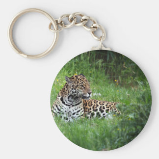 The Beautiful Jaguar Keychain