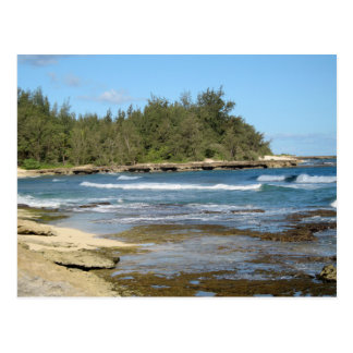 The Beautiful Turtle Bay in Oahu Hawaii Postcard