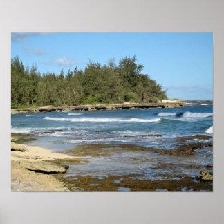 The Beautiful Turtle Bay in Oahu Hawaii Poster