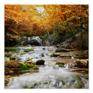 The beautiful waterfall in forest, autumn poster