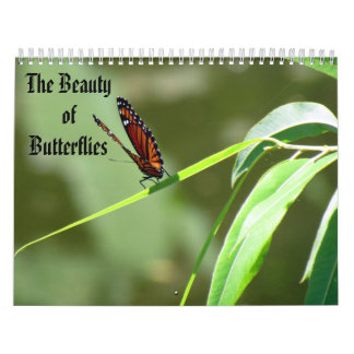 The Beauty of Butterflies Calendar