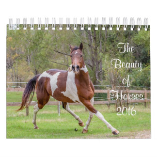 The Beauty of Horses Calendar