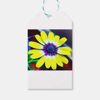 The Beauty of Yellow and Purple Gift Tags