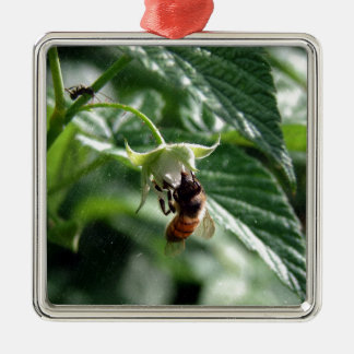 The Bee on the Raspberry Bush Silver-Colored Square Ornament