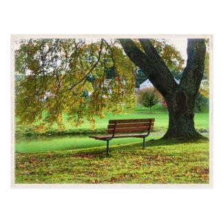 The Bench on Memorial Boulevard, Bristol CT Postcard